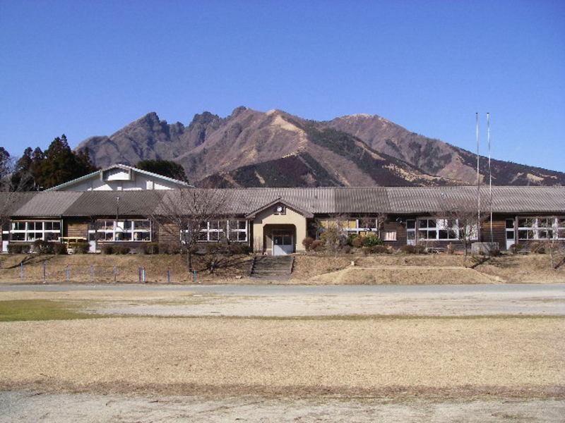 20080216necodake