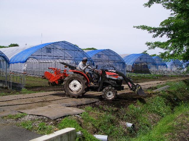 Imgp9258